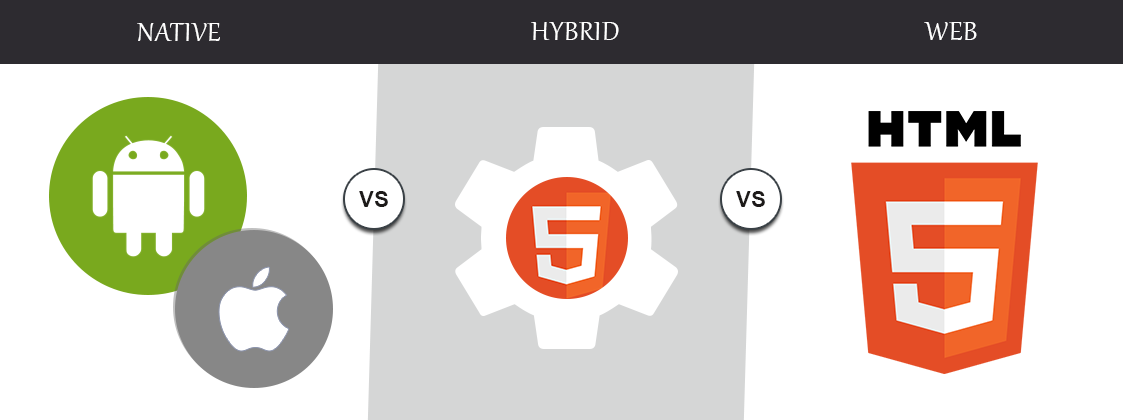 Why is everyone adopting the Native App as compared to the Web App or Hybrid App ?