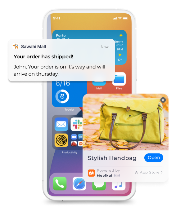 iOS Widget Development